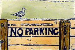The Illiterate Seagull
