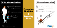 Ticks prevention and removal