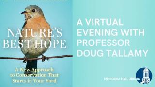 nature's best hope: a virtual evening with professor doug tallamy